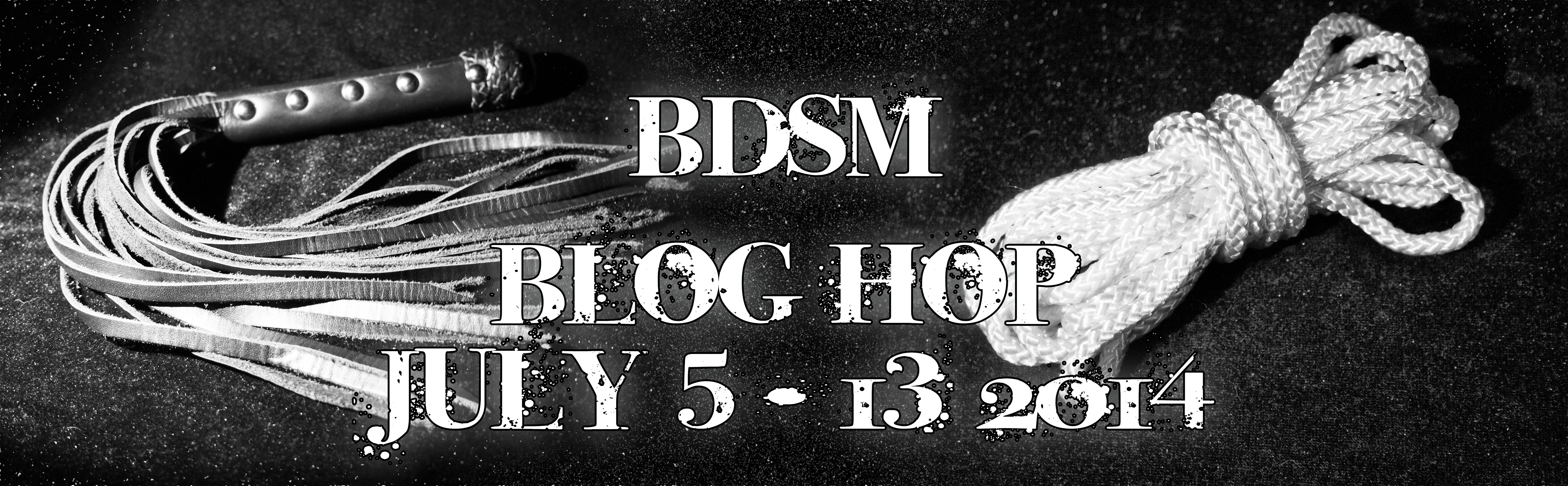BDSM Blog Hop, Part 1: Guest post by SirRubi