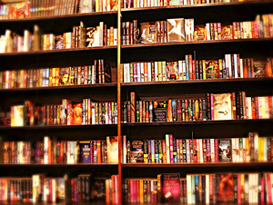book-shelvesmanip_300x226